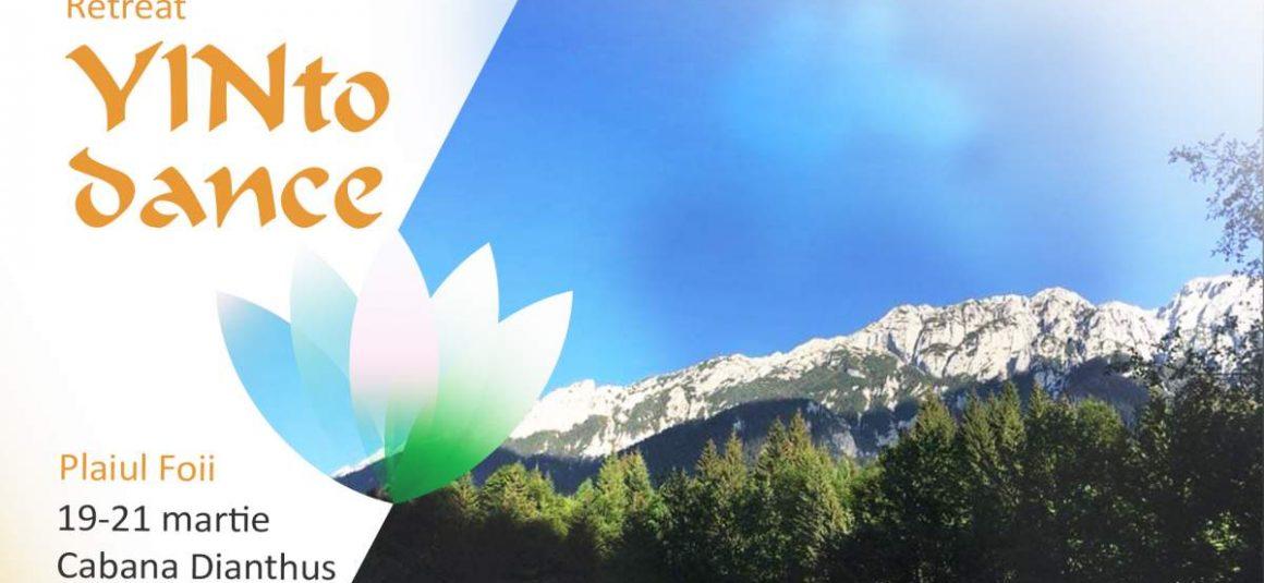 Retreat de Yoga si dans YINto Dance Plaiul Foii